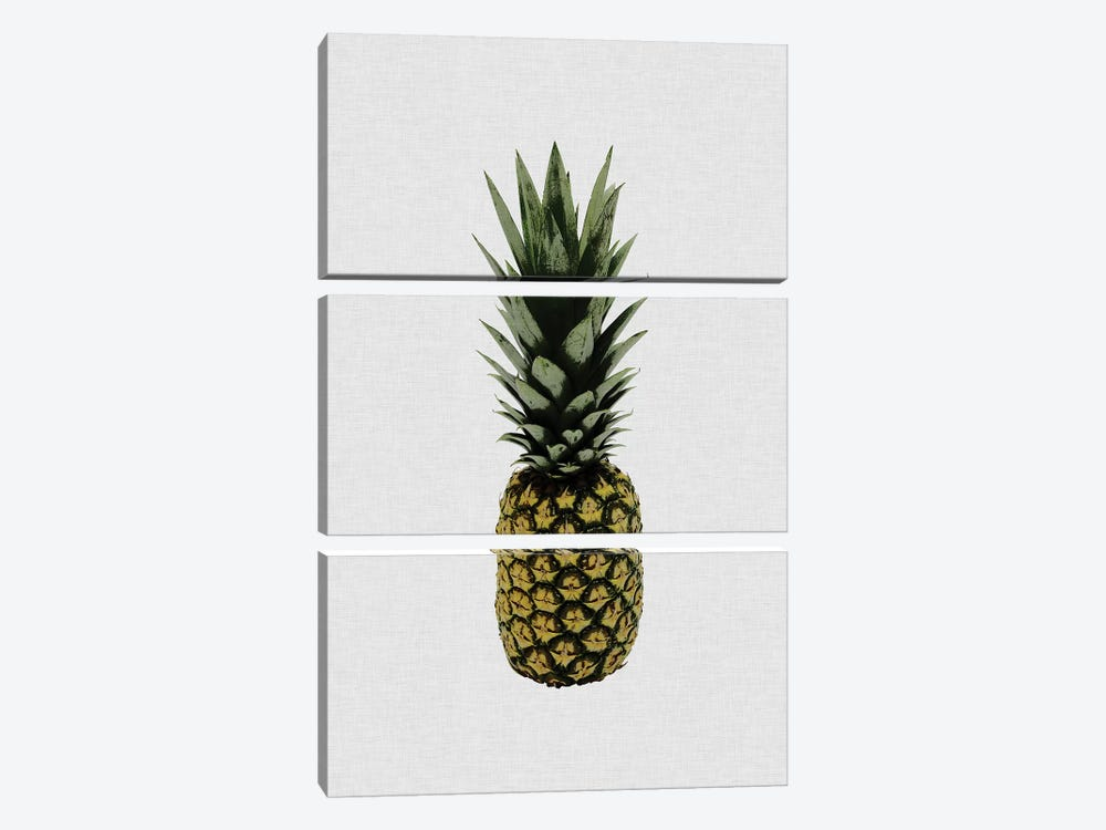 Pineapple I by Orara Studio 3-piece Canvas Wall Art