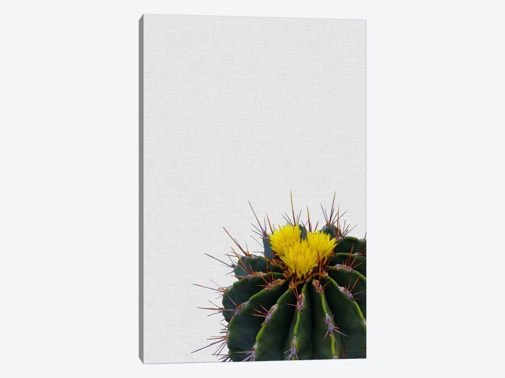 Cactus Flower by Orara Studio 1-piece Canvas Wall Art