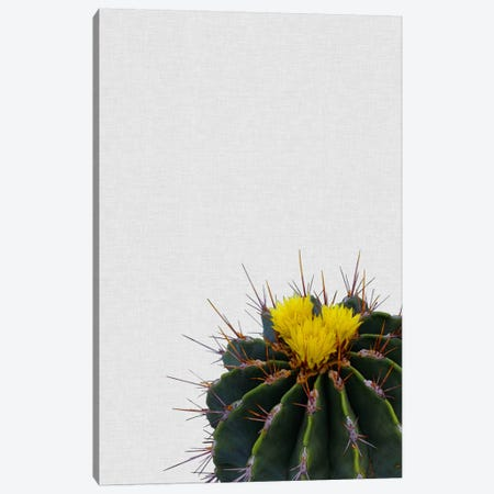 Cactus Flower Canvas Print #ORA41} by Orara Studio Canvas Art Print