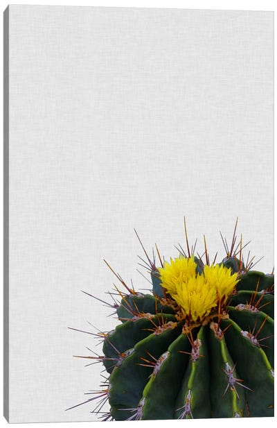 Cactus Flower Canvas Art Print