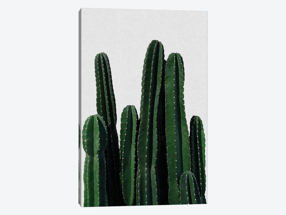 Cactus I 1-piece Canvas Art Print