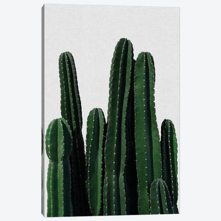 Cactus I Canvas Print #ORA42} by Orara Studio Canvas Art Print