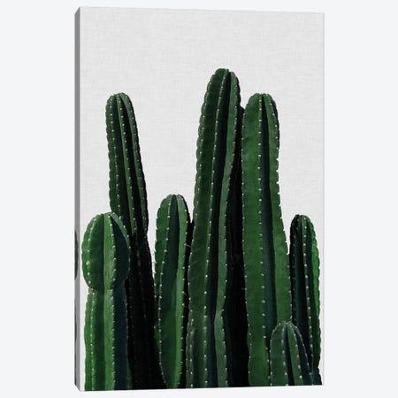 Cactus I Canvas Print #ORA42} by Orara Studio Canvas Art Print