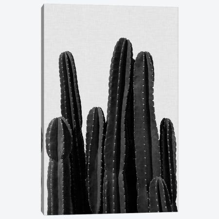Cactus I B&W Canvas Print #ORA43} by Orara Studio Canvas Art Print