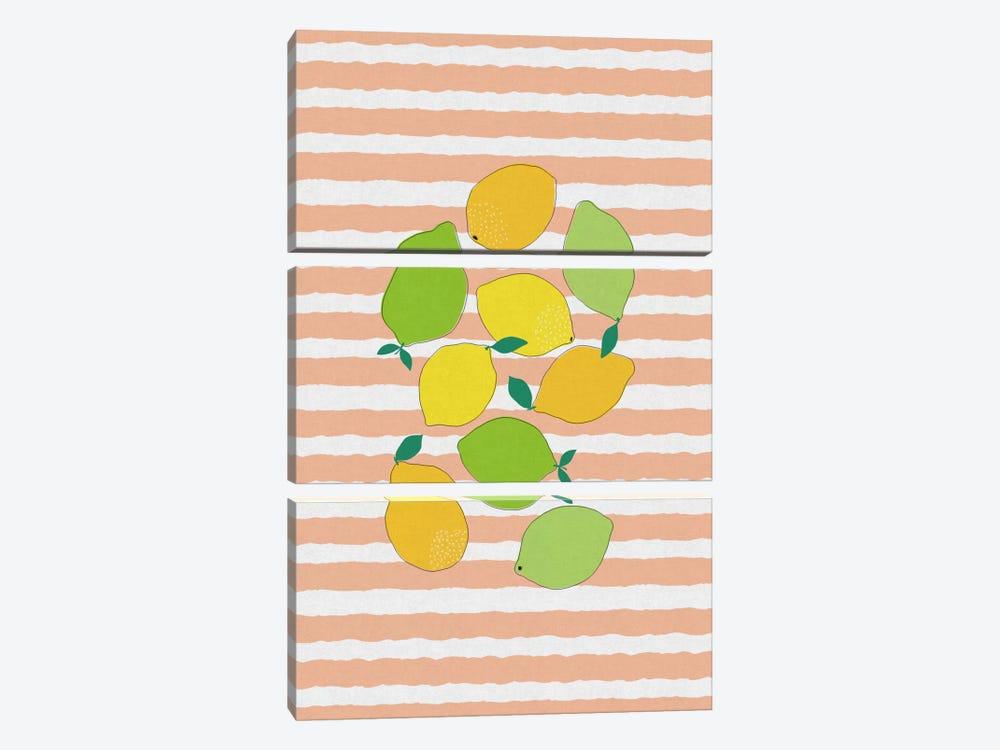 Citrus Crowd by Orara Studio 3-piece Canvas Wall Art