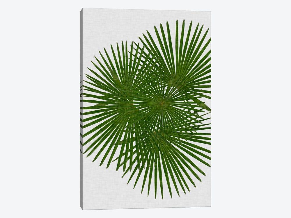 Fan Palm by Orara Studio 1-piece Canvas Artwork