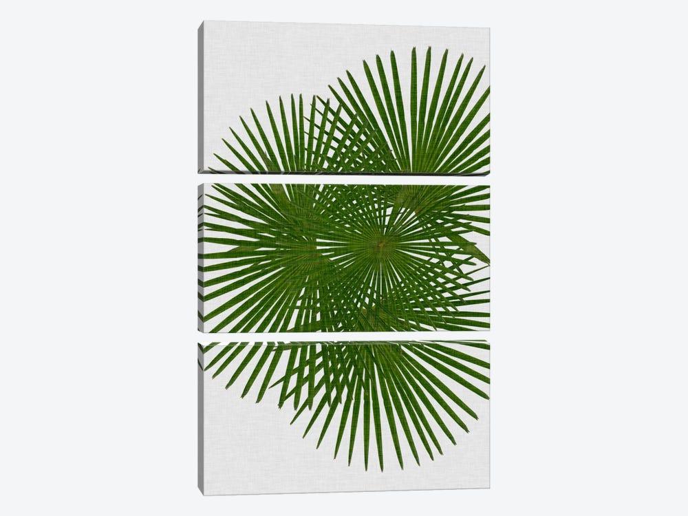 Fan Palm by Orara Studio 3-piece Canvas Artwork