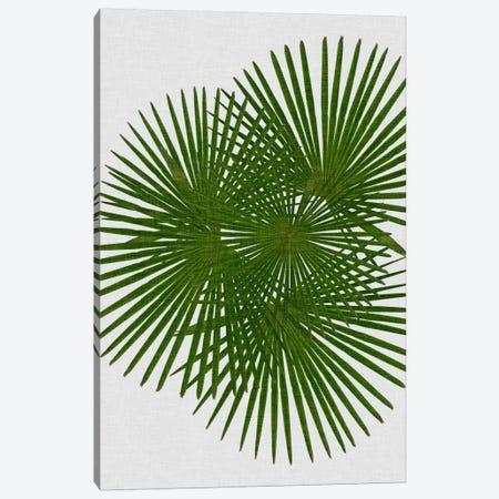 Fan Palm Canvas Print #ORA65} by Orara Studio Canvas Artwork