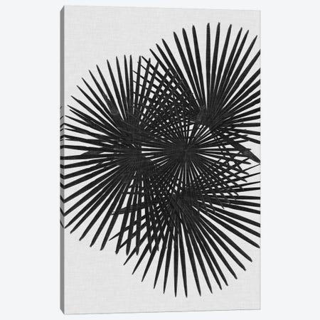 Fan Palm B&W Canvas Print #ORA66} by Orara Studio Canvas Wall Art