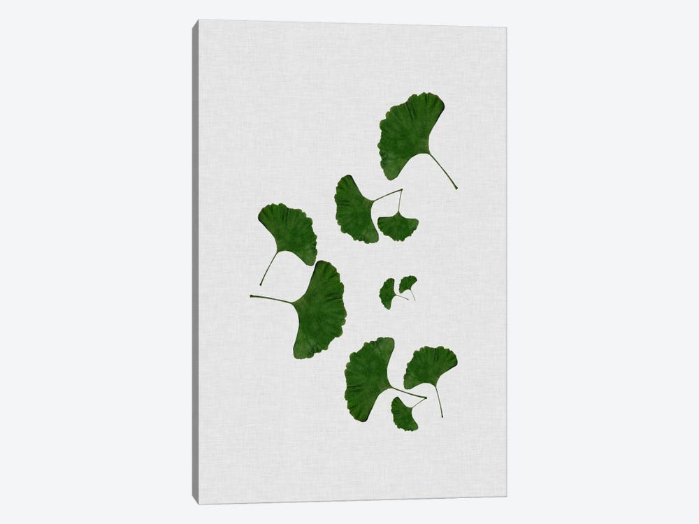 Ginkgo Leaf I by Orara Studio 1-piece Canvas Artwork