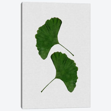 Ginkgo Leaf II Canvas Print #ORA80} by Orara Studio Art Print