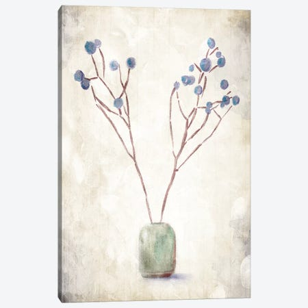 Secluded Plant Canvas Print #ORE17} by On Rei Canvas Art Print