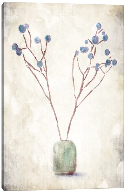 Secluded Plant Canvas Art Print