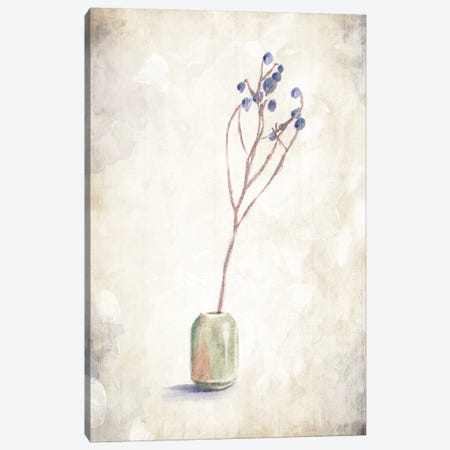 Solitude Of A Plant Canvas Print #ORE18} by On Rei Canvas Art