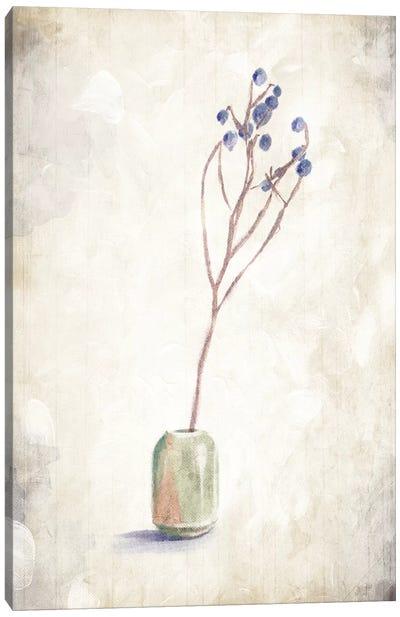 Solitude Of A Plant Canvas Art Print