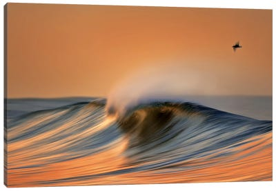 Colorful Wave and Bird Canvas Art Print