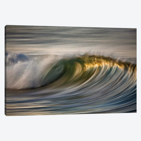 Curling Wave Canvas Print #ORI11} by David Orias Canvas Wall Art