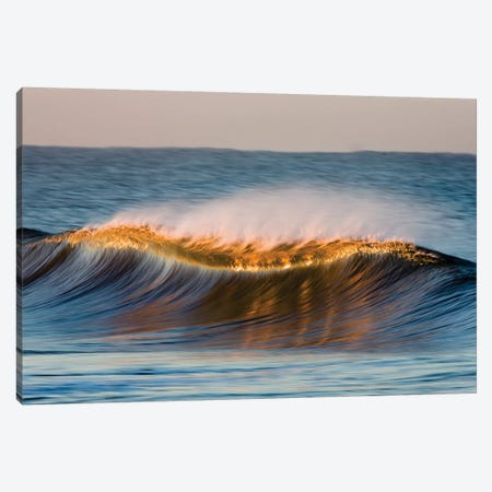 Curved Wave Canvas Print #ORI12} by David Orias Canvas Art