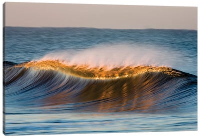 Curved Wave Canvas Art Print