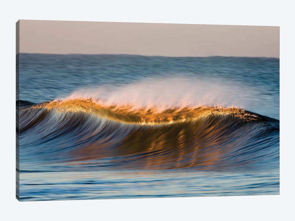 Curved Wave by David Orias 1-piece Canvas Art Print
