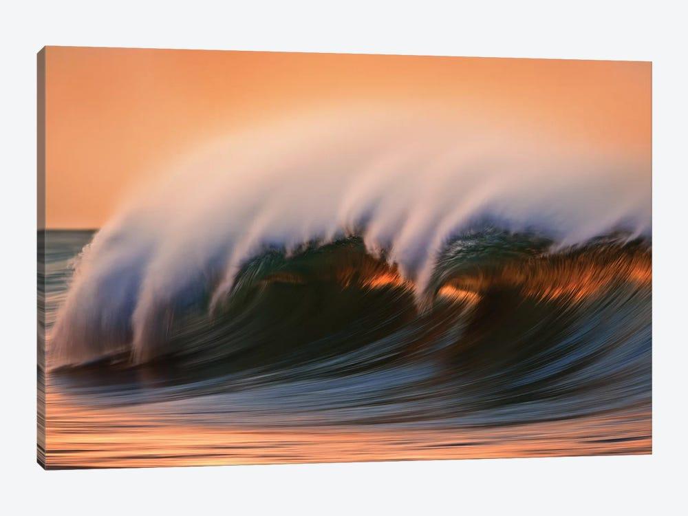 Dark Breaking Wave by David Orias 1-piece Canvas Wall Art