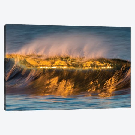 Glassy Golden Wave Canvas Print #ORI15} by David Orias Art Print