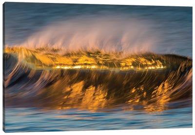 Glassy Golden Wave Canvas Art Print