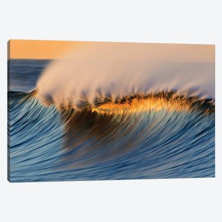 Golden Crest Wave Canvas Print #ORI16} by David Orias Canvas Print
