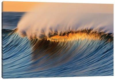 Golden Crest Wave Canvas Art Print