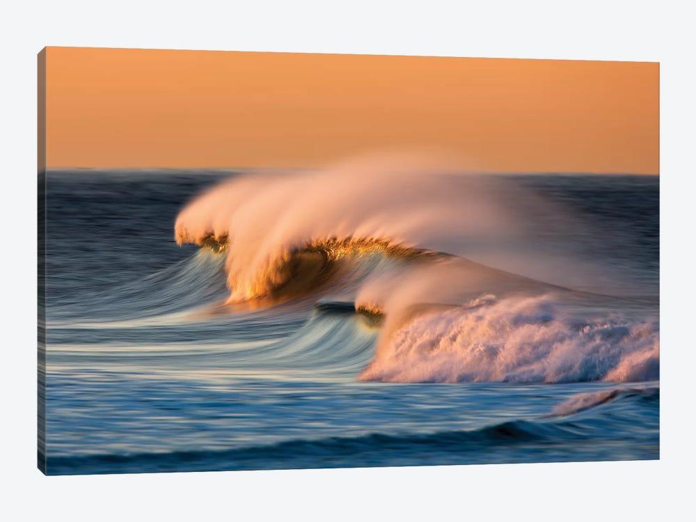 Multiple Waves by David Orias 1-piece Canvas Art