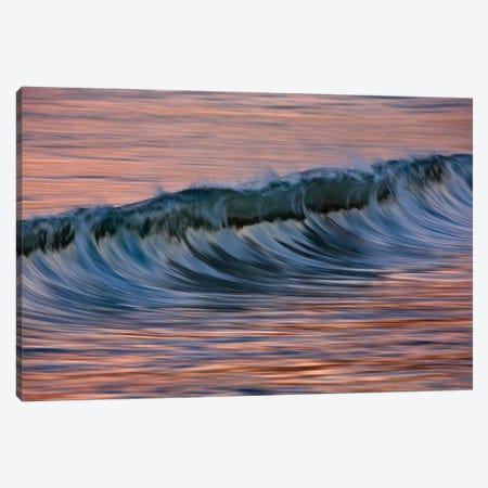 Pastel Wave Canvas Print #ORI21} by David Orias Canvas Print