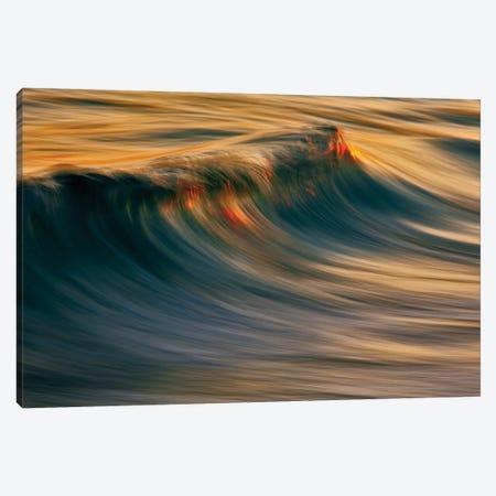 Rising Wave Canvas Print #ORI28} by David Orias Canvas Print