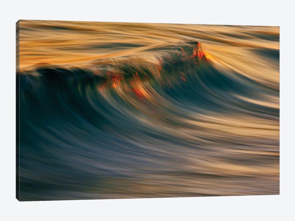 Rising Wave by David Orias 1-piece Canvas Wall Art