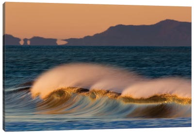 Wave and Islands Canvas Art Print