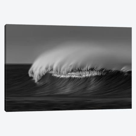 Wave Black and White Canvas Print #ORI46} by David Orias Canvas Artwork