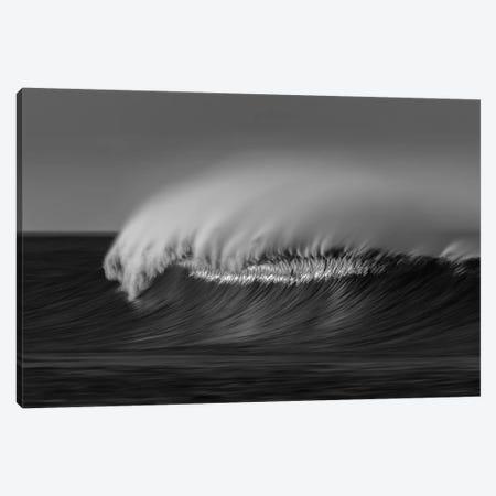 Wave Black and White Canvas Print #ORI46} by David Orias Canvas Artwork