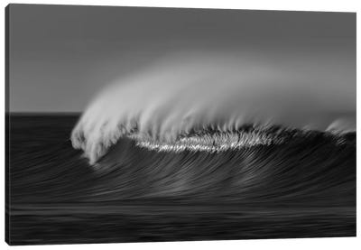 Wave Black and White Canvas Art Print