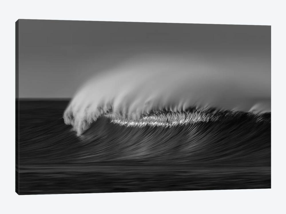 Wave Black and White by David Orias 1-piece Canvas Artwork