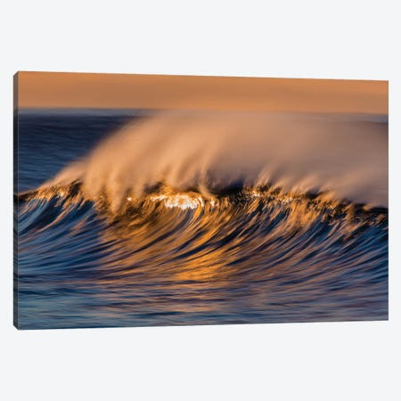 Wispy Wave Canvas Print #ORI49} by David Orias Canvas Art Print