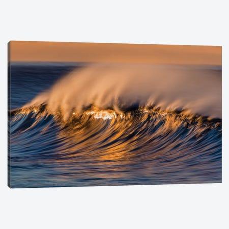 Wispy Wave Canvas Print #ORI49} by David Orias Canvas Art Print