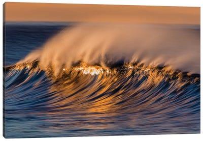 Wispy Wave Canvas Art Print