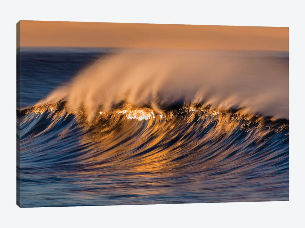 Wispy Wave by David Orias 1-piece Canvas Art Print