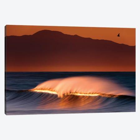 Beautiful Seascape Canvas Print #ORI4} by David Orias Art Print