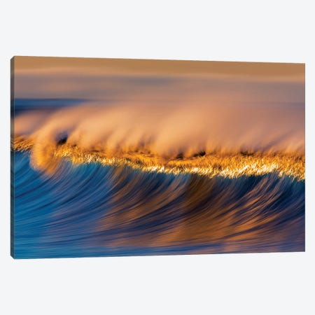 Blue and Gold Wave Canvas Print #ORI6} by David Orias Canvas Art Print