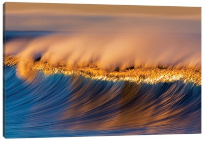 Blue and Gold Wave Canvas Art Print