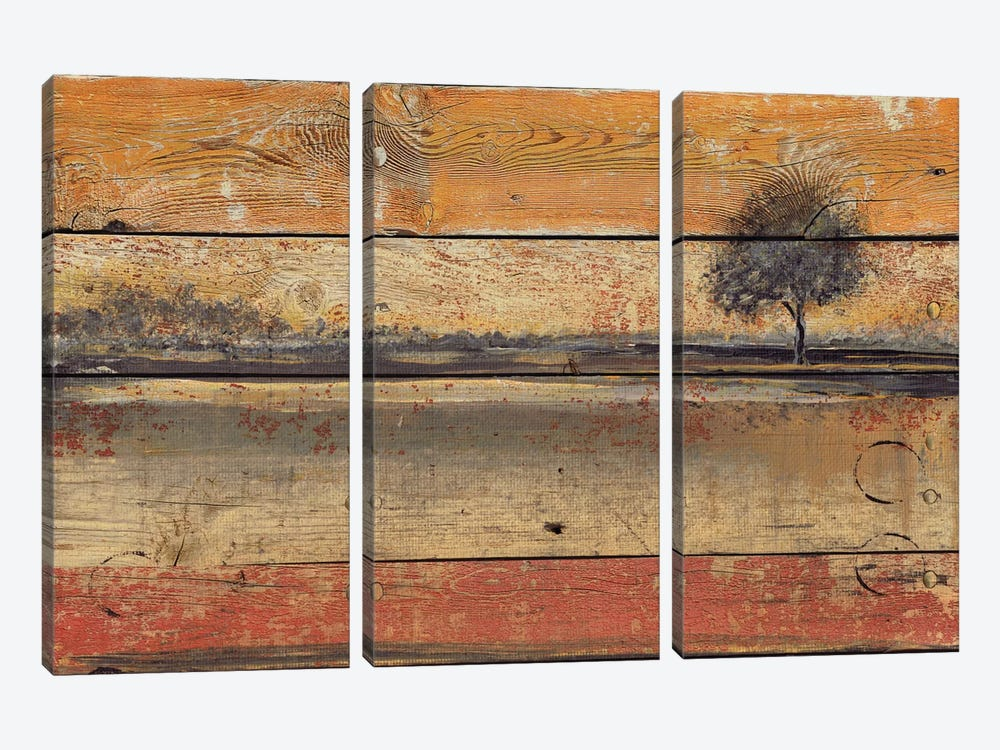 Old Photo I by Irena Orlov 3-piece Canvas Art