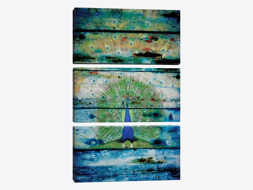 Peacock II by Irena Orlov 3-piece Canvas Wall Art