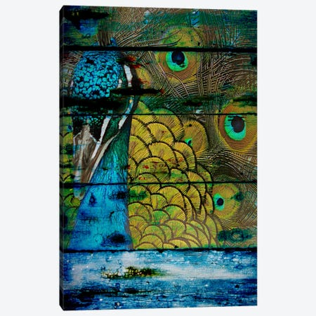 Peacock IV Canvas Print #ORL107} by Irena Orlov Canvas Artwork