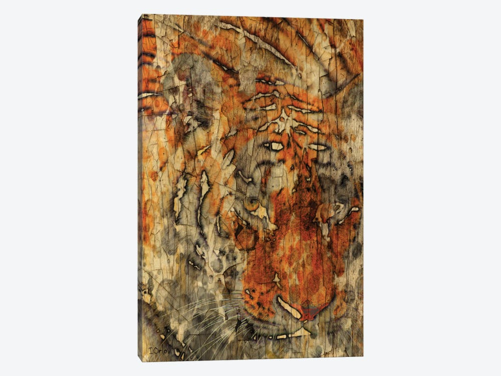 Sumatran Tiger by Irena Orlov 1-piece Canvas Print