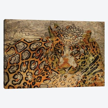 WILD 3-Piece Canvas #ORL120} by Irena Orlov Canvas Print
